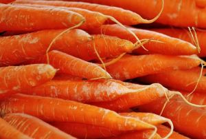 carrots for digestion
