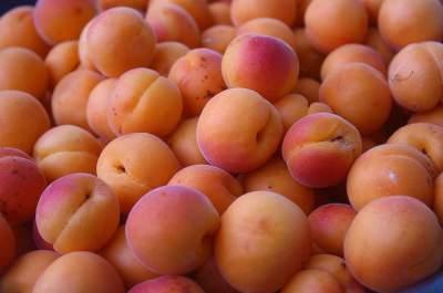 apricot face mask